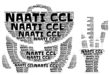 What is NAATI CCL?
