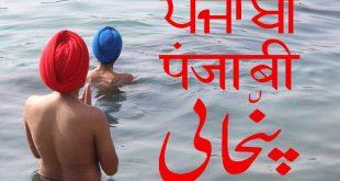 An idea on CCL Language policy helps pass Punjabi NAATI CCL - CCLPractice